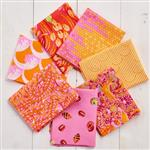 Zuma fabric bundle by Tula Pink