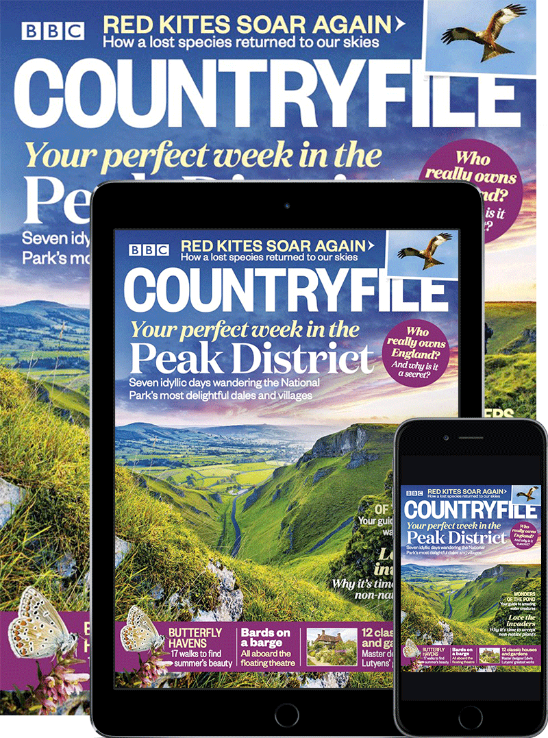 BBC Countryfile Print & Digital Magazine subscription