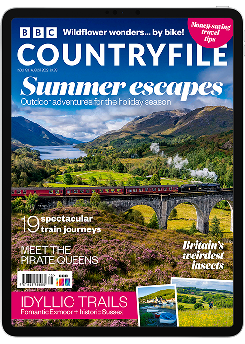 Click to view product details and reviews for Bbc Countryfile Digital Magazine Subscription.