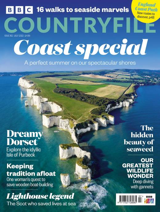 BBC Countryfile Magazine  half price special offer on subscriptions.